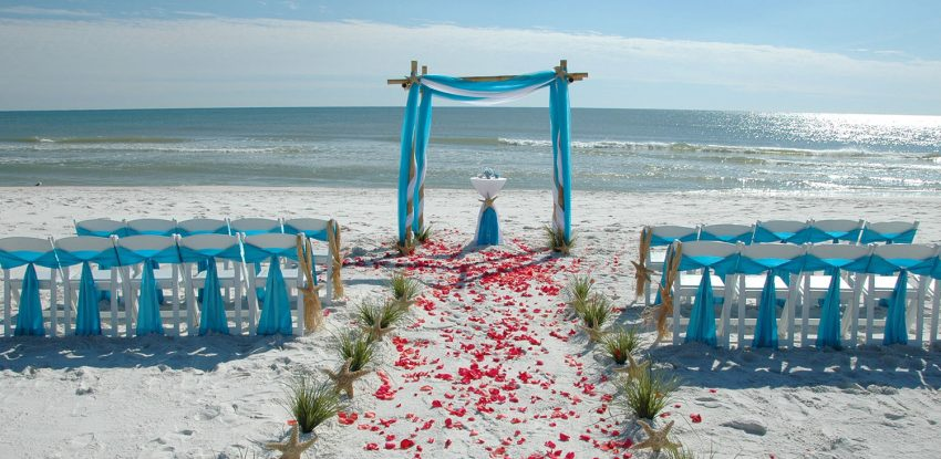 Бердянск: сезон свадеб