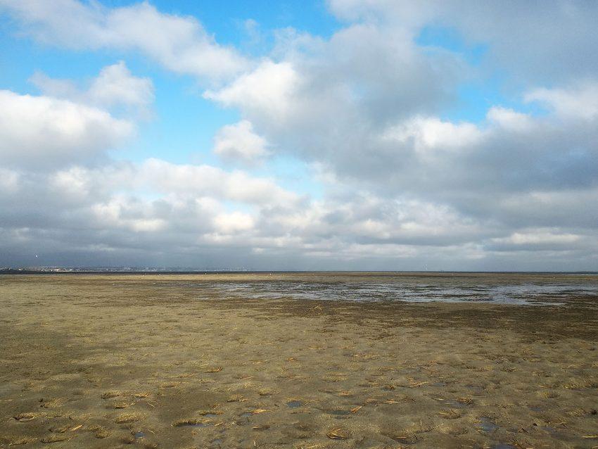 отливы бердянск